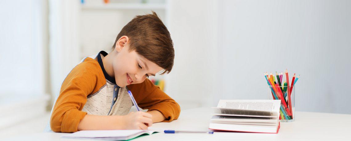 basisschoolbegeleiding Meppel